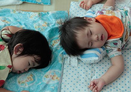 お昼寝の写真