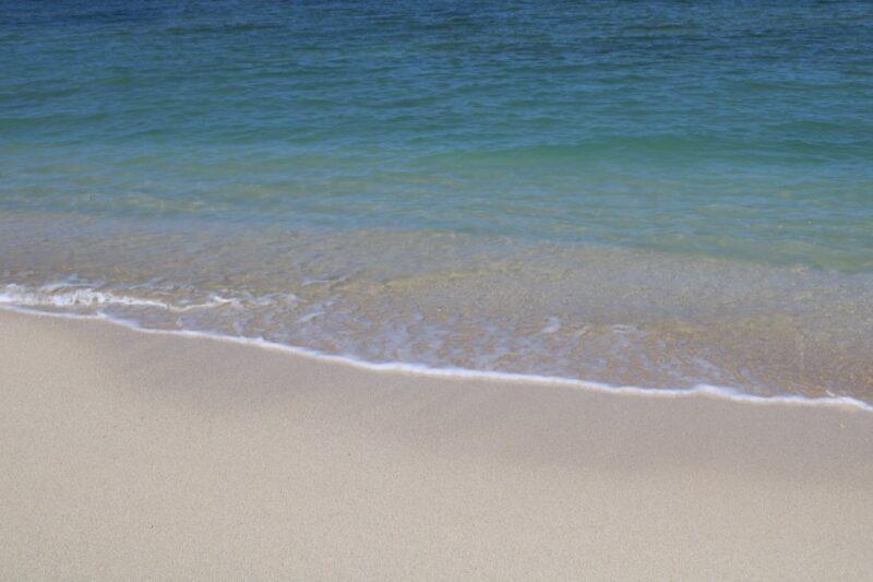 【わかたけ】浜下り🌊の写真